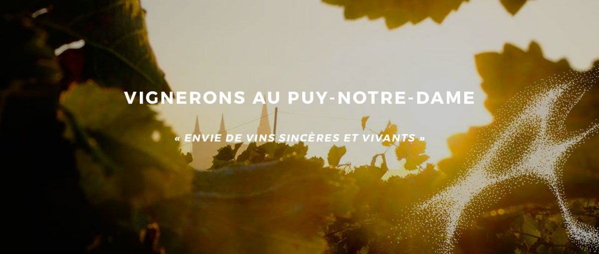 site_vin-austral_accueil