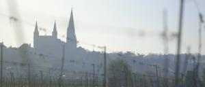 L'Austral - Vignerons au Puy-Notre-Dame